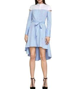 BCBG Leandra Long Sleeve Dress
